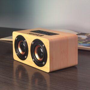 Double Dip Speaker